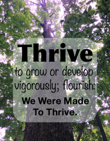 Listen to this: Thriving Solopreneur Podcast!!